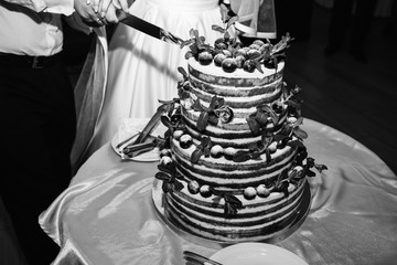 Wedding couple is cutting modern rustic cake. Open sponge dessert with mint leaves and fresh fruit grapes on top. Boho style wedding cake. Groom in the black suit and bride in white elegant dress.