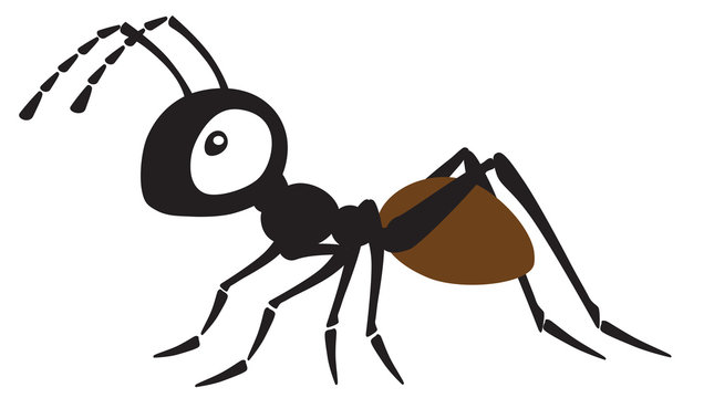 cartoon ant insect . Side view vector illustration isolated on white
