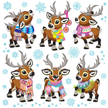 set of cartoon reindeer wearing a colorful knitted scarf . Collection of funny Christmas tiny caribou deer in different poses. Vector illustration for baby and little kid