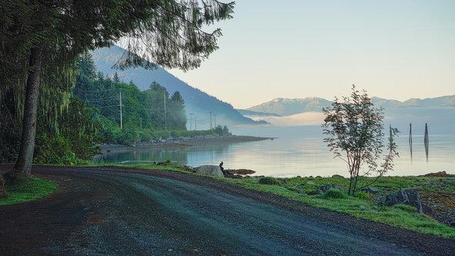 Wrangell Mist