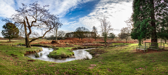 A panoramic photograph of an English autumn park with a few trees, a winding river and a wooden bench