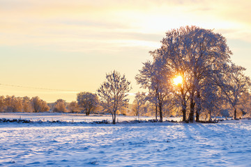 Sunset in a wintry landscape