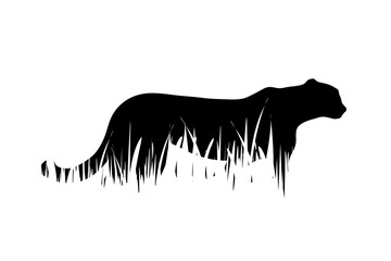 Vector silhouette of tiger in the grass on white background.