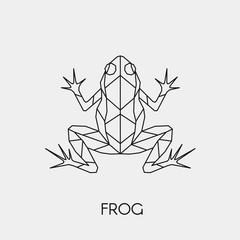 Geometric frog. Polygonal linear abstract animal. Vector illustration