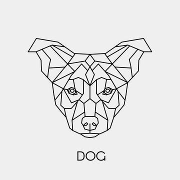 Geometric dog. Polygonal linear animal head. Vector illustration.