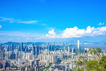 Shenzhen Nanshan District Houhai CBD Skyline/Shenzhen City Scenery