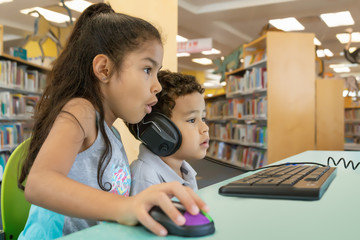 Big sister helps the little brother on the computer at the library.