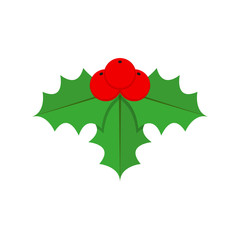 holly berry christmas, flat design vector