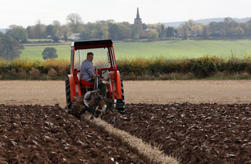 A competitor looks from his vintage tractor during the British National Ploughing Championships in Austrey