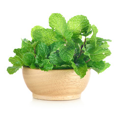 Fresh mint isolated on white background.