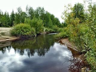 Summer landscape in Siberia