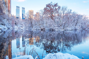 Spoed Fotobehang New York City Central Park. New York. USA in winter covered with snow