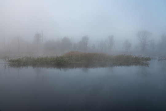 Autumn misty landscape on the river in the morning. Reeds and trees.