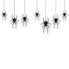 Black spiders hanging on a web isolated on white background. Vector design element.