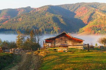 Misty autumn morning landscape in national park. Mountains, yellow, red and green leaves on trees. Fog near rural wooden house. Carpathians, Ukraine. Calm mood image.