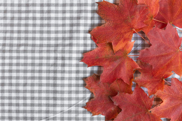 Red maple leaves background top view. Mockup for design. Copy space.