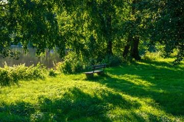 Einsame Bank im satten grün am See mit Bäumen. Standort: Deutschland, Nordrhein-Westfalen, Hoxfeld