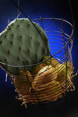 Opuntia ficus-indica Fico d'India Frutos de tuna Опунция индийская ft71086799 צבר מצוי Ficodindia Indian fig cactus pear