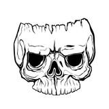 Anatomically Correct Human Skull Isolated Hand Drawn Line Art Vector Illustration Tattoo Design