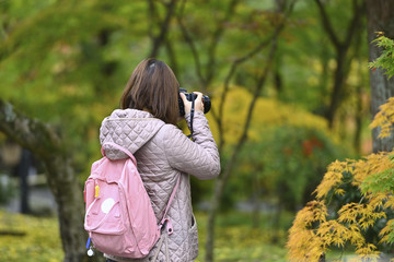 紅葉を撮る女性