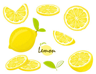 Fresh lemon fruits, collection of  illustrations