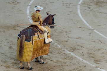 picador riding his horse