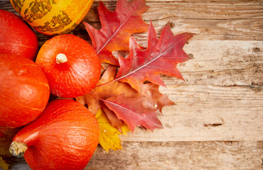 Close-up of pumpkins and autumn leaves background. Selective focus, shallow DOF.