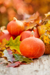 Autumn pumpkins on wood with abstract fall leaves background