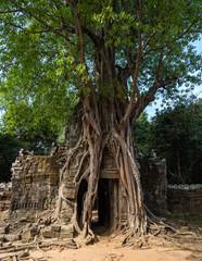 Kambodscha - Ta Som