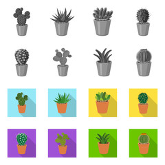 Vector design of cactus and pot icon. Collection of cactus and cacti stock vector illustration.