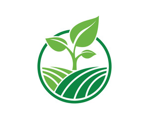 Vector Circle Green Leaf Growing Plant Modern Agriculture Sign Symbol Icon Logo Design Inspiration