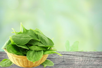 green spinach leaves isolated closeup on blur background