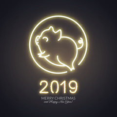 Cute pig neon logo, New year 2019 gold shiny glow design, chinese horoscope symbol, vector illustration