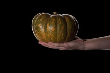 Hand holding pumpkin.