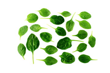 green spinach leaves isolated closeup on white background top view