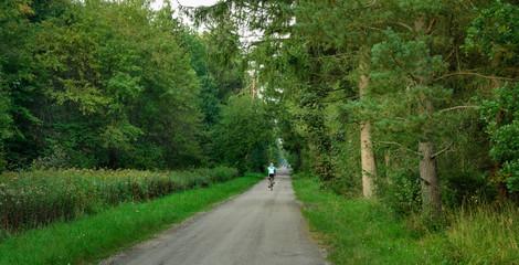Man biking in the Perlacher Forst, panoramic view