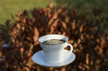White porcelain cup with black tea in countryside surroundings, autumn leaves and plaid, cozy breakfast photo