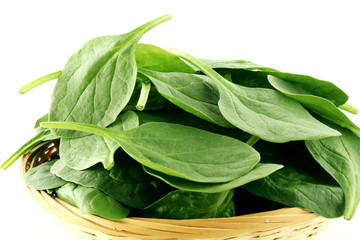 green spinach leaves isolated closeup in basket on white background