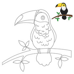 drawing worksheet for preschool kids with easy gaming level of difficulty. Simple educational game for kids. Illustration of toucan sitting on branch for toddlers
