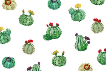 Watercolor Cactuses On White Background