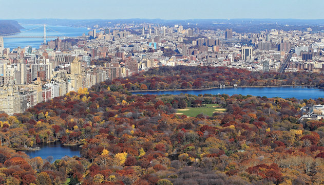 Fall colors of Central Park foliage in late afternoon. Aerial view toward Central Park West. Upper West Side, Manhattan, New York City