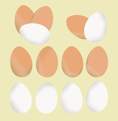 Set of eggs with different colors. Vector, isolated design on yellow background. Food or ingredient illustration.