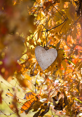 autumn background with a hanging heart