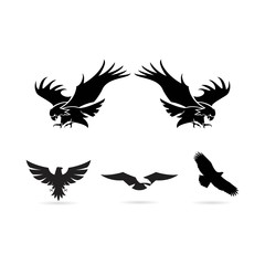 eagle icon logo design