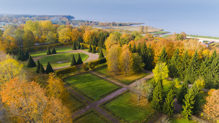 Aerial view of the public park in autumn time