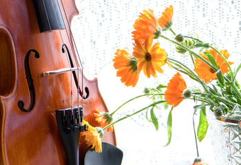 Bottom half of a violin with sheet music and flowers the front of the fiddle on windows background.