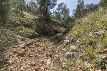 Tsalmon river,near Gilboa mountain, Galilee, Israel