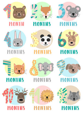 Vector image of 12 months for a baby with animals. A collection of children's stickers with numbers and bear, fox, mouse, rabbit, panda, giraffe, cat, elephant, dog, deer, lion, raccoon. Baby month