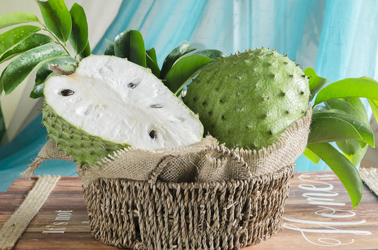 Soursop (also graviola, guyabano, and in Latin America, guanábana) is the fruit of Annona muricata, a broadleaf, flowering, evergreen tree