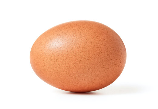 raw brown chicken egg isolated on whtie background